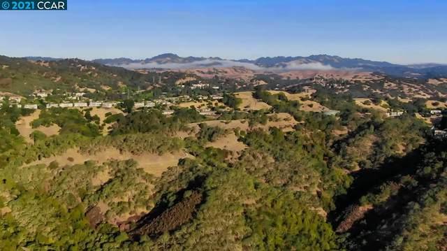 2300 Ridgewood Rd, Alamo, CA 94507 (#40958103) :: Realty World Property Network
