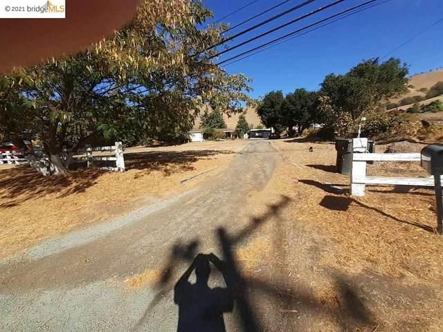 8735 Marsh Creek Road, Clayton, CA 94517 (#40958479) :: Blue Line Property Group