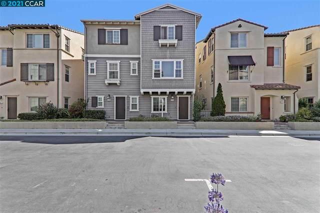 2435 Monet Ter, Fremont, CA 94539 (#40958988) :: Realty World Property Network