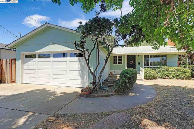 4493 Nicolet Ave, Fremont, CA 94536 (#40959747) :: Real Estate Experts