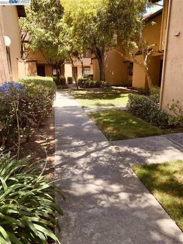 6293 Joaquin Murieta C, Newark, CA 94560 (#40959826) :: Excel Fine Homes