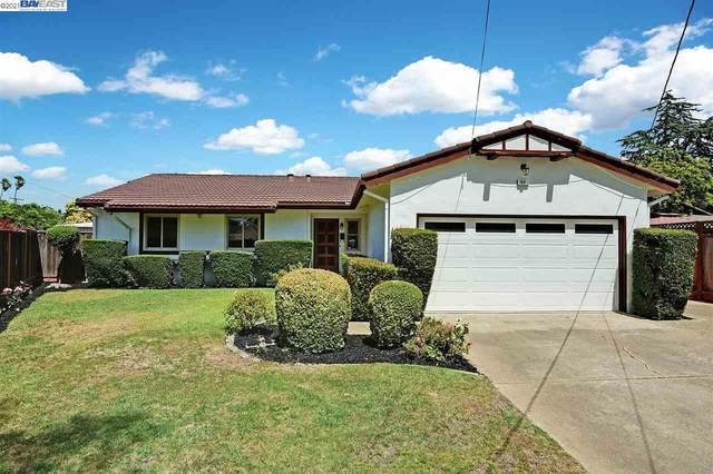 36412 Hafner Court, Newark, CA 94560 (#40959966) :: Realty World Property Network