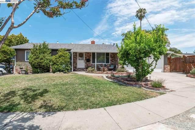 358 Christina Ct, Pleasanton, CA 94566 (#40960587) :: Armario Homes Real Estate Team