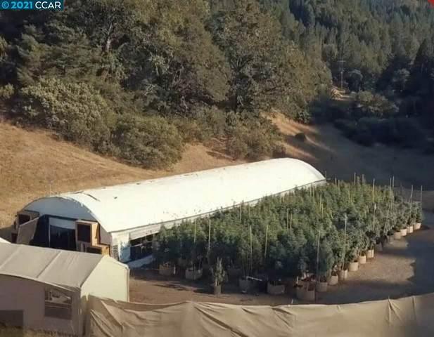 8800 Cave Creek Rd, REDWOOD VALLEY, CA 95470 (#40960673) :: Swanson Real Estate Team | Keller Williams Tri-Valley Realty