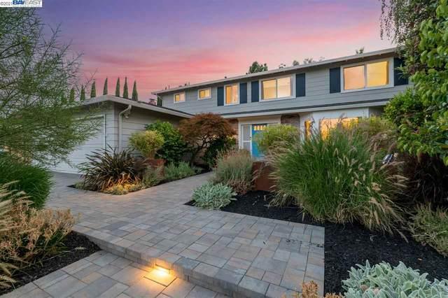 2213 Via Espada, Pleasanton, CA 94566 (#40960679) :: Armario Homes Real Estate Team