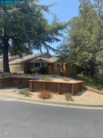 255 Western Hills Dr, Pleasant Hill, CA 94523 (MLS #40961321) :: Jimmy Castro Real Estate Group