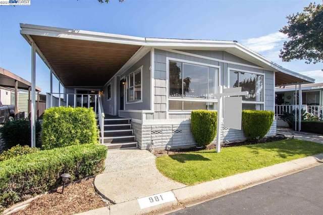 981 Fall River Drive #311, Hayward, CA 94544 (#40961393) :: Sereno