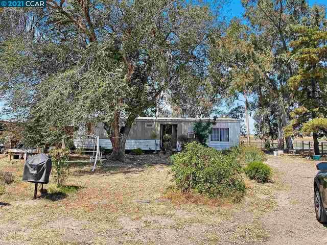 5363 Tule Tree Ln, Oakley, CA 94561 (#40961703) :: Armario Homes Real Estate Team