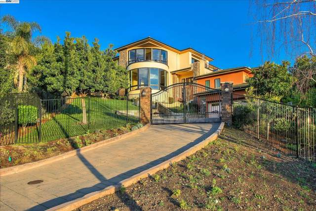 241 Clara Ct, Fremont, CA 94539 (#40966057) :: Realty World Property Network