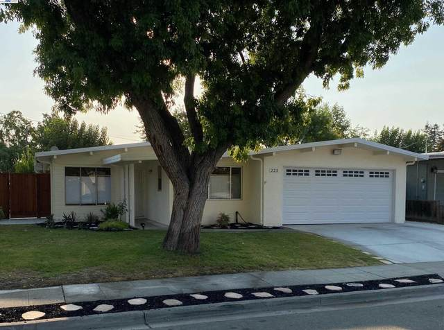223 Donner Ave, Livermore, CA 94551 (#40967948) :: Swanson Real Estate Team | Keller Williams Tri-Valley Realty