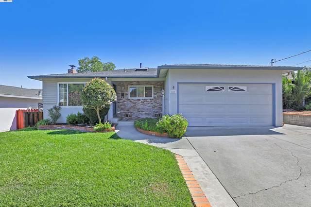 320 Christina Ct, Pleasanton, CA 94566 (MLS #40968309) :: 3 Step Realty Group