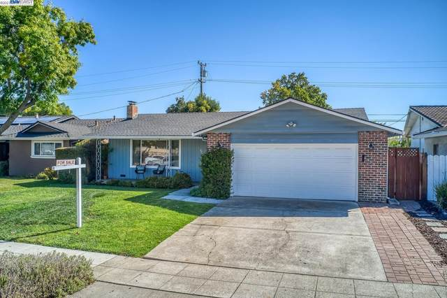 930 Rockdale Dr, San Jose, CA 95129 (#40968357) :: MPT Property