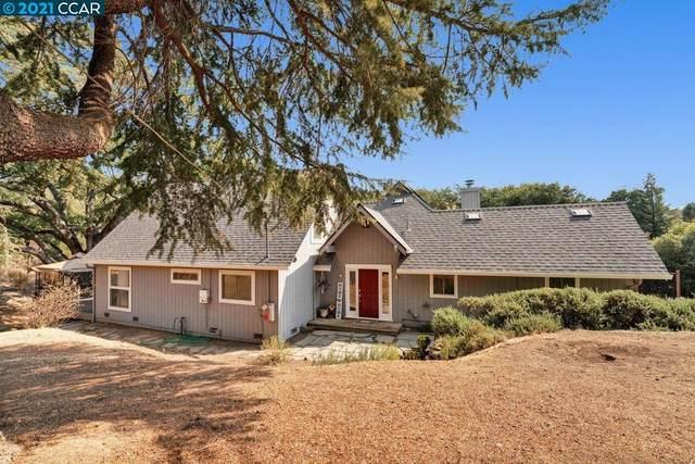 4201 Morgan Territory Rd, Clayton, CA 94517 (#40969963) :: Blue Line Property Group