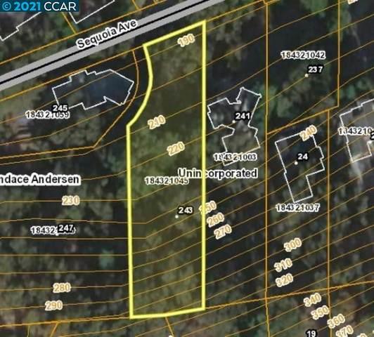 243 Sequoia Ave, Walnut Creek, CA 94595 (#40971258) :: MPT Property