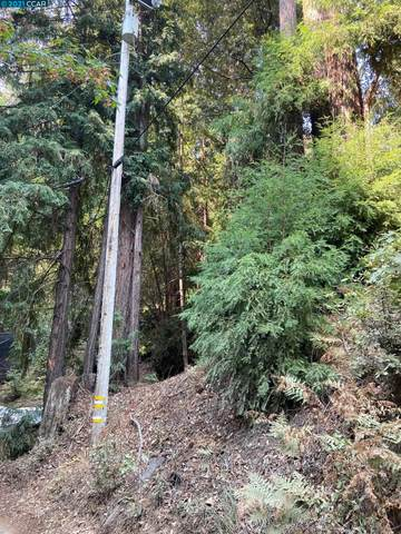 0 Starr Creek Road, Boulder Creek, CA 95006 (#40971375) :: Realty World Property Network