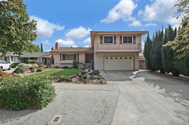40029 Catalina Pl, Fremont, CA 94539 (MLS #40971507) :: 3 Step Realty Group