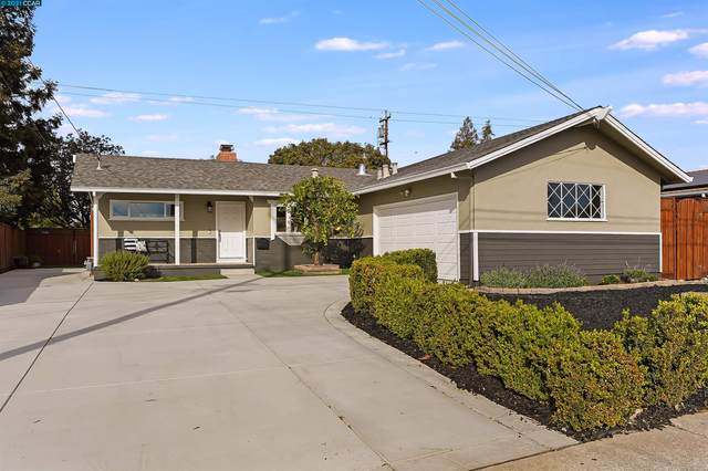 4113 Forestview Ave, Concord, CA 94521 (#40971781) :: Blue Line Property Group