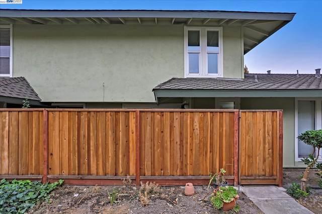 5625 Evergreen Ter, Fremont, CA 94538 (#40971867) :: Excel Fine Homes