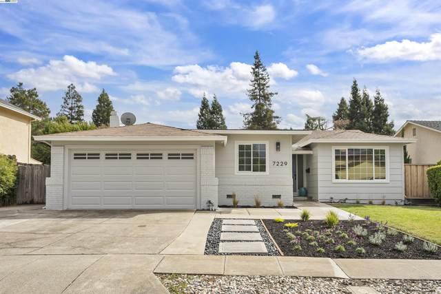 7229 Valley Trails Dr, Pleasanton, CA 94588 (#40972009) :: Excel Fine Homes