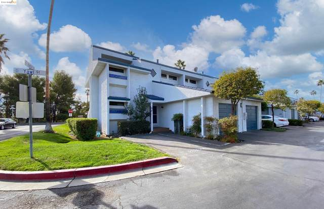 5860 Yawl St, Discovery Bay, CA 94505 (#40972082) :: The Lucas Group