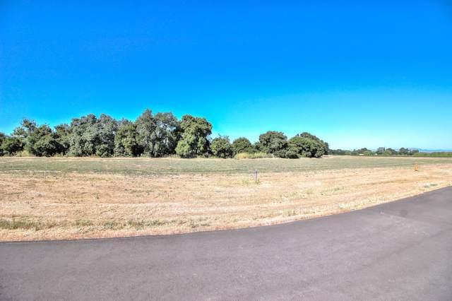 307 Pacheco Creek Lane, Hollister, CA 95023 (#ML81712061) :: Swanson Real Estate Team   Keller Williams Tri-Valley Realty