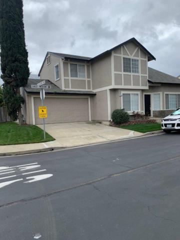 5450 Sunset Meadows Lane, Oakley, CA 94561 (#ML81742022) :: The Lucas Group