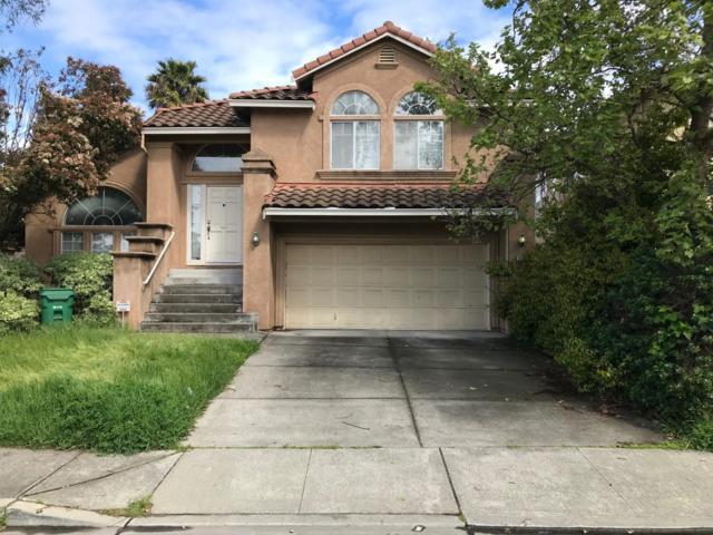 25046 Mohr Drive, Hayward, CA 94545 (#ML81746727) :: The Grubb Company