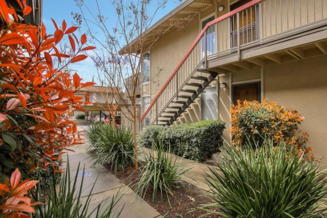 59 Massolo Drive B, Pleasant Hill, CA 94523 (#ML81748088) :: Blue Line Property Group