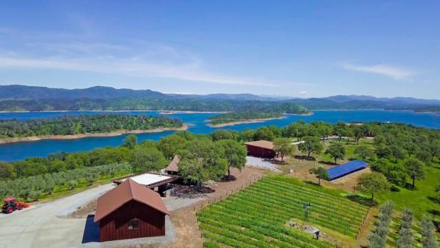 10330 Vista De La Sierra, La Grange, CA 95329 (#ML81750573) :: Realty World Property Network