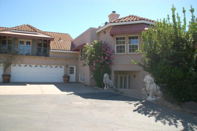 14699 Holman Mountain Road, Jamestown, CA 95327 (#ML81758522) :: Realty World Property Network