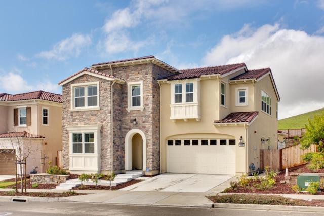 3005 Montbretia Way, San Ramon, CA 94582 (#ML81759254) :: Realty World Property Network
