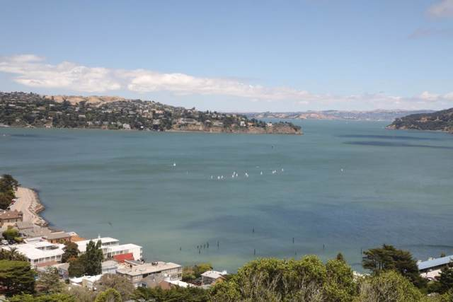 62 Marion, Sausalito, CA 94965 (#ML81761594) :: Armario Venema Homes Real Estate Team