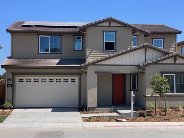 39348 Humpback Whale Road, Newark, CA 94560 (#ML81762252) :: Realty World Property Network