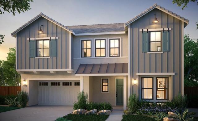 6781 Brush Rabbit Avenue, Newark, CA 94560 (#ML81763422) :: Realty World Property Network