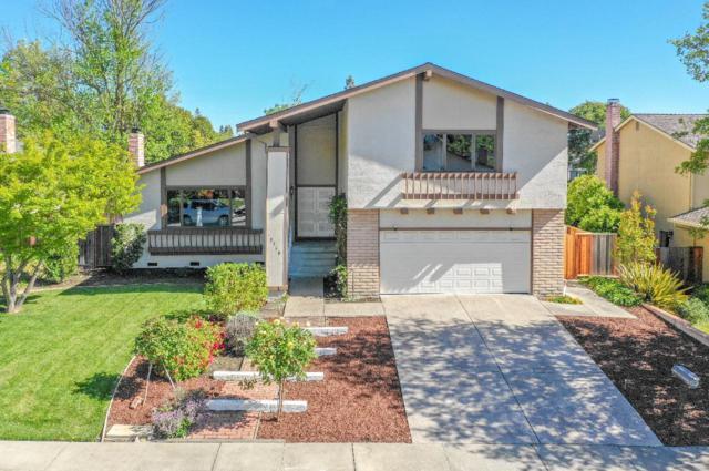 3360 Camarones Place, San Ramon, CA 94583 (#ML81764562) :: Realty World Property Network
