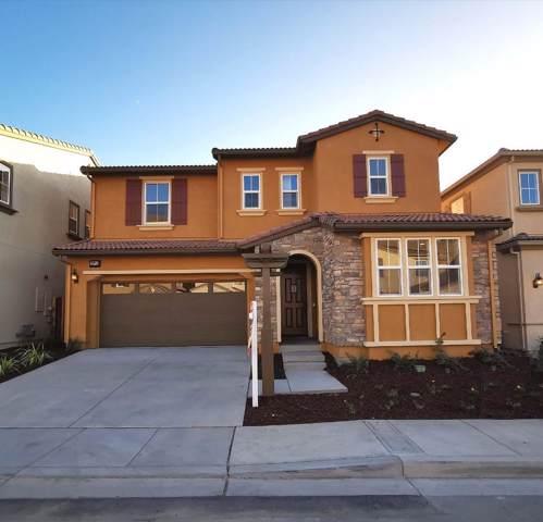 29743 Cantera Drive, Hayward, CA 94544 (#ML81771341) :: The Lucas Group