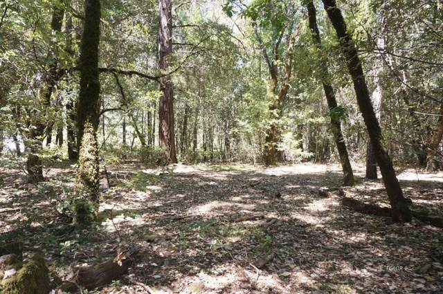 4271 State Hwy 299, BURNT RANCH, CA 95527 (#ML81772488) :: RE/MAX Accord (DRE# 01491373)