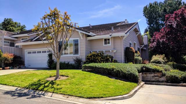 8719 Mccarty Ranch Drive, San Jose, CA 95135 (#ML81772836) :: The Spouses Selling Houses