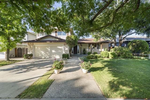 1773 Michon Drive, San Jose, CA 95124 (#ML81772957) :: Armario Venema Homes Real Estate Team