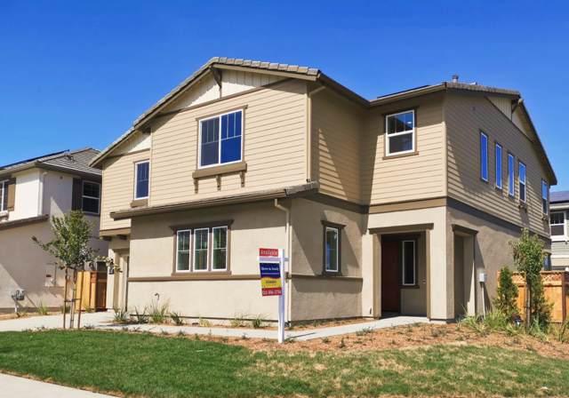 39464 Dragonfly Street, Newark, CA 94560 (#ML81773189) :: Realty World Property Network