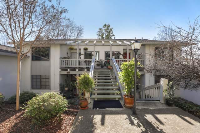 5427 Cribari Court, San Jose, CA 95135 (#ML81779554) :: Armario Venema Homes Real Estate Team