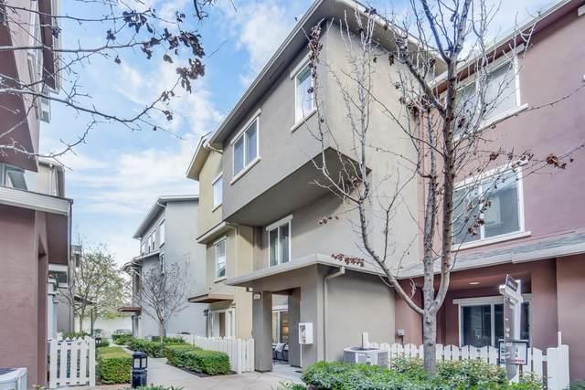 903 Alta Mar Terrace, San Jose, CA 95126 (#ML81788571) :: Realty World Property Network