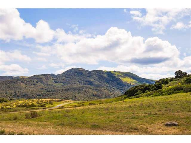 12 Mesa Trail, Carmel, CA 93923 (#ML81788634) :: Blue Line Property Group