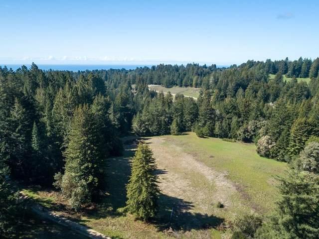 831 Smith Grade, Santa Cruz, CA 95060 (#ML81788659) :: Armario Venema Homes Real Estate Team