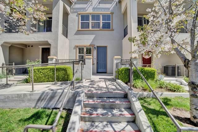 598 Cedarville Lane, San Jose, CA 95133 (#ML81788767) :: Blue Line Property Group