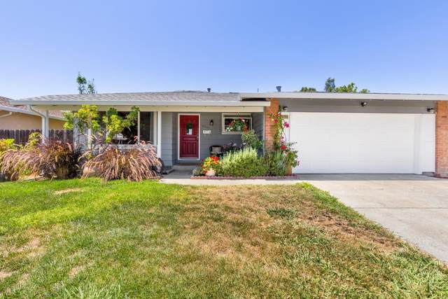 6295 Escallonia Drive, Newark, CA 94560 (#ML81800544) :: Armario Venema Homes Real Estate Team