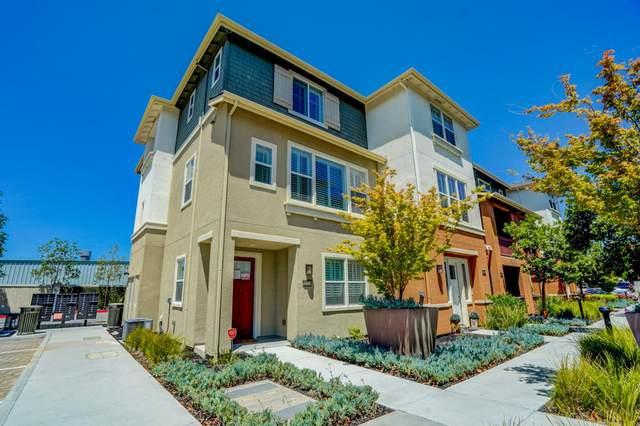 37774 Taro Terrace, Newark, CA 94560 (#ML81803704) :: Armario Venema Homes Real Estate Team