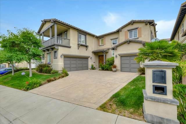 50 Arundel Drive, Hayward, CA 94542 (#ML81804114) :: Armario Venema Homes Real Estate Team