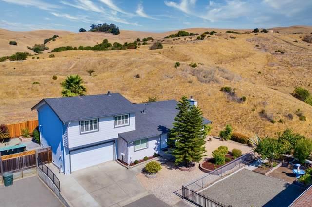 613 Appian Way, Union City, CA 94587 (#ML81812232) :: Realty World Property Network