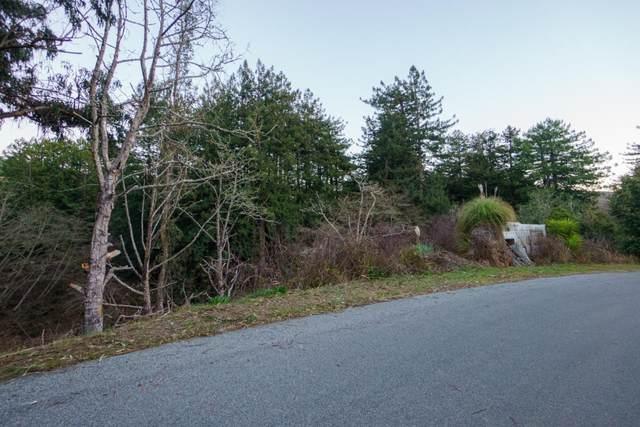 0 Tunitas Creek Road, Half Moon Bay, CA 94019 (#ML81826711) :: Paradigm Investments